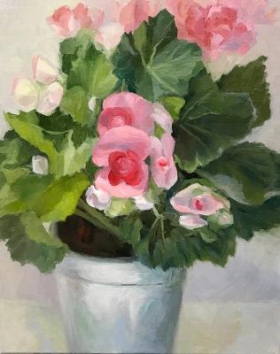 Winter Begonias in Tin Pot, WIP-C
