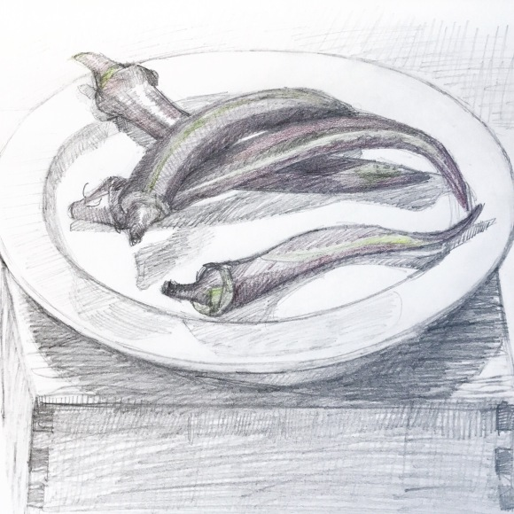 Red and Green Okra, graphite and colored pencil, 8x10""
