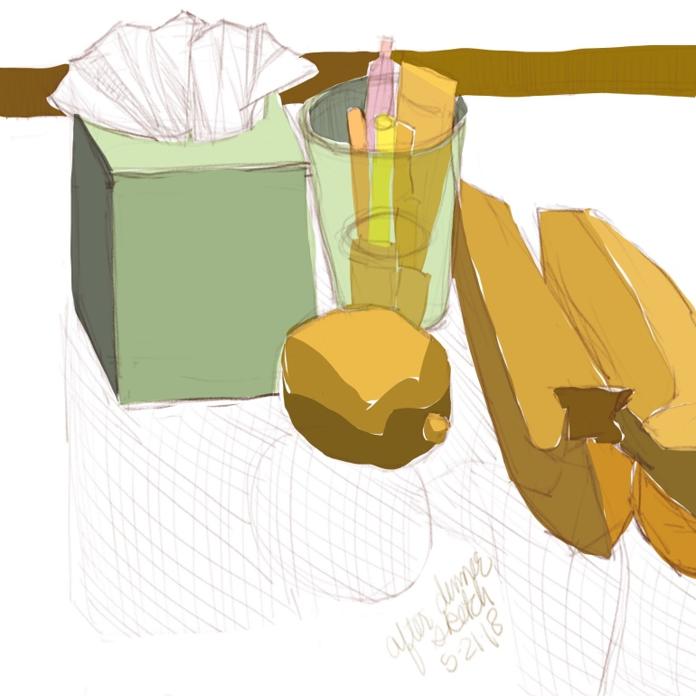Another before breakfast sketch of stuff on the dining room table in Procreate on the iPad.