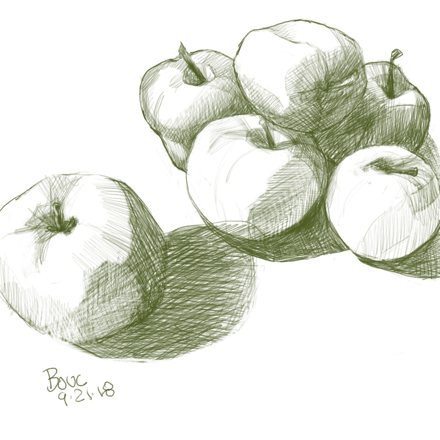 Apples from Donna's trees, (sketching apples on Apple (iPad) with Apple (pencil) in Procreate.
